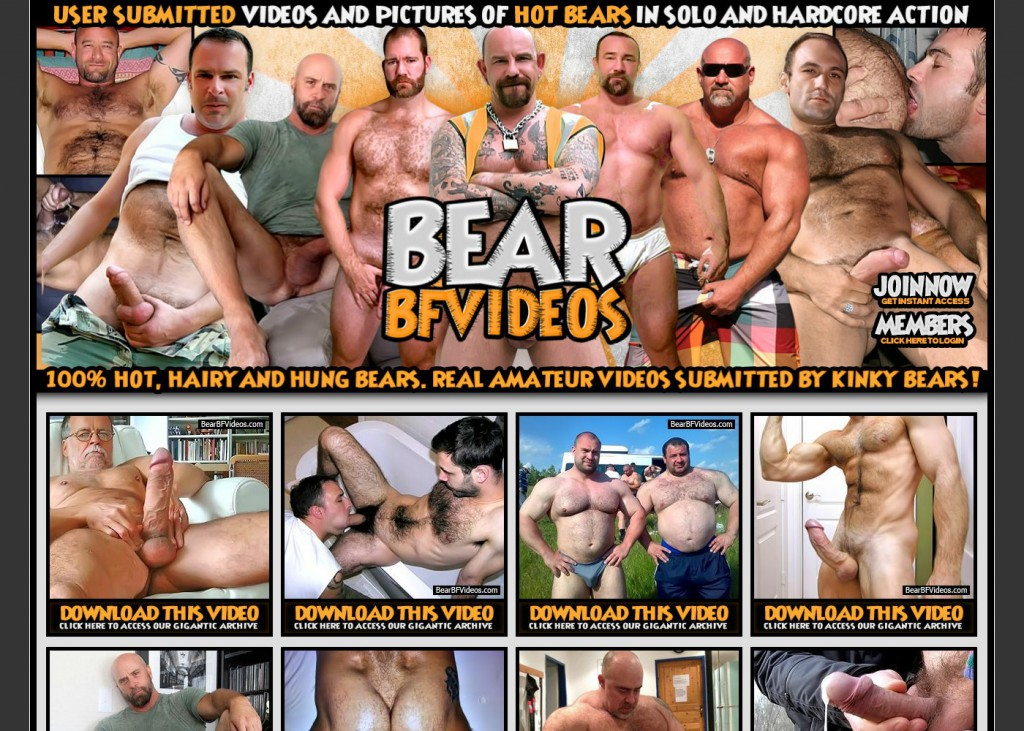 bear-bf-videos