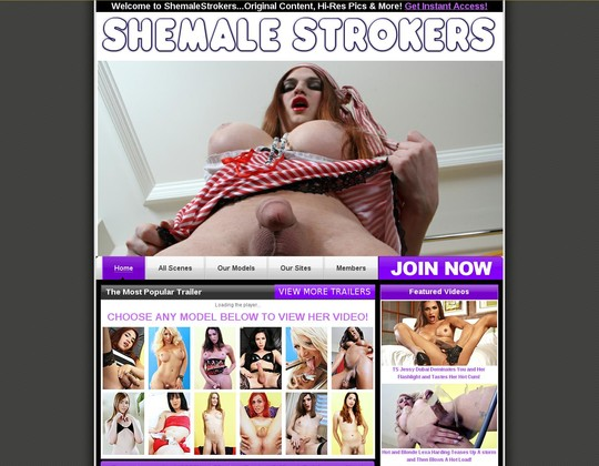 shemalestrokers.com