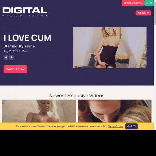 digital video vision